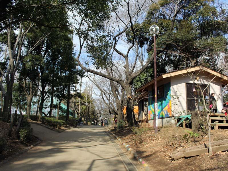 羽根木公園の遊び場の脇