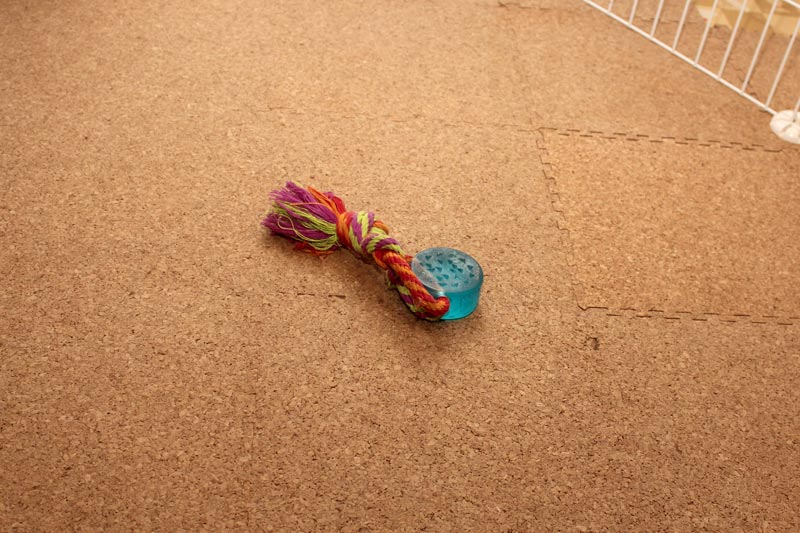 青いおもちゃ