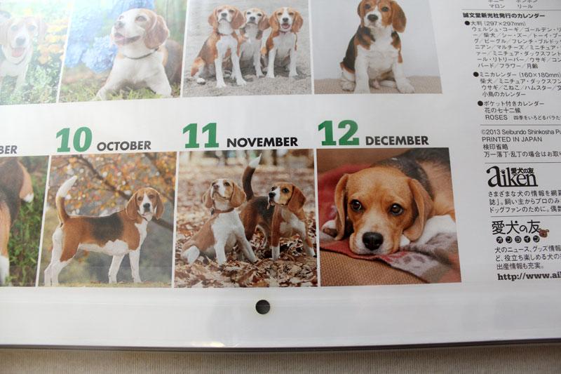11月は空豆と花豆
