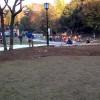 芦花公園ドッグランの清掃に参加しました