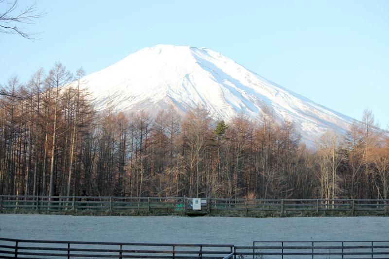 冬の朝の富士山