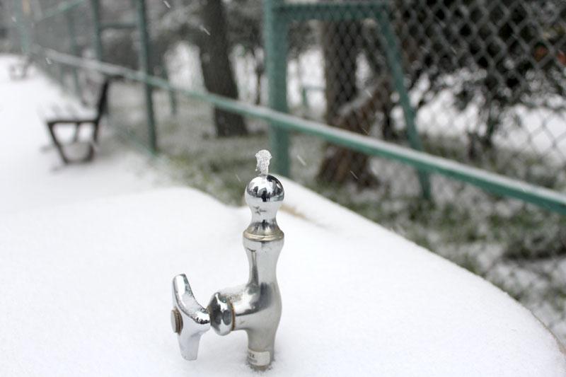 凍り付く水栓