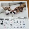 うちの子カレンダー