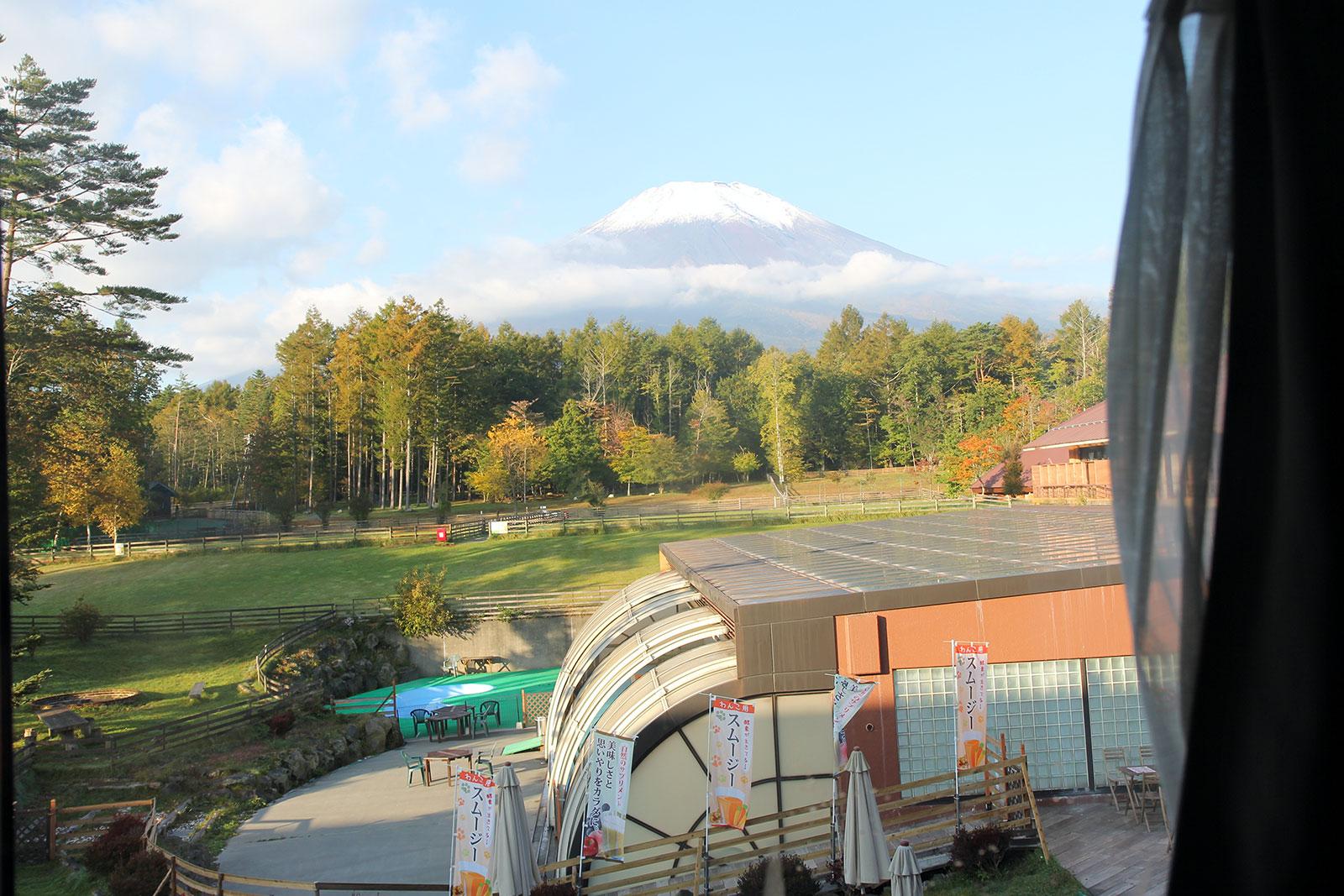 ドッグリゾートワフの富士山側部屋から