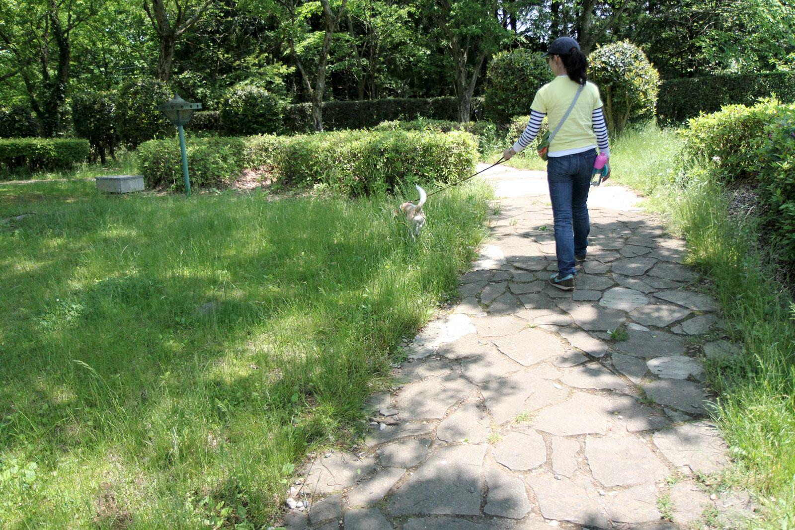 那須高原SAでお散歩
