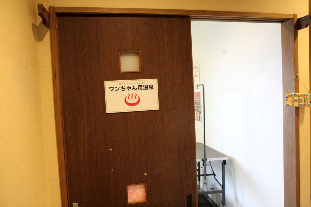 ワンちゃん温泉